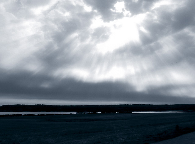 Danish landscape, September 2003. Leica Digilux 1, P mode, black & white in Photoshop, then added blue tones.