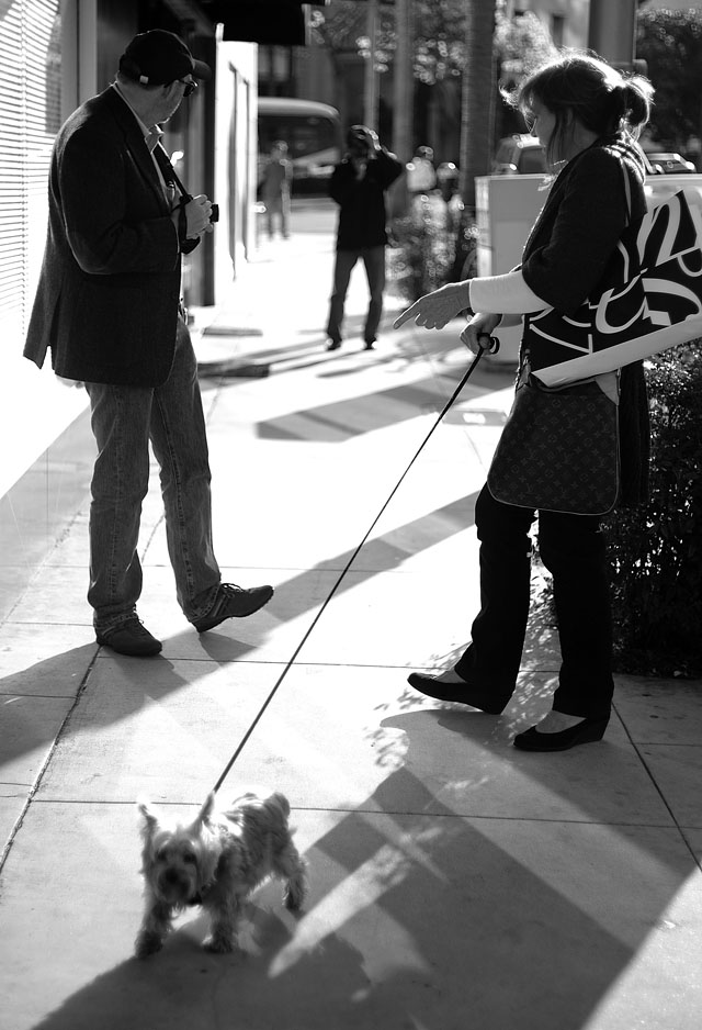 Marc Taylor and Richard Yee persuading the italian lady to have her dog shot. Leica M9 with 50mm Summicron-M f/2.0