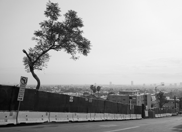 A view of Los Angeles from Sunset Boulevard in West Hollywood. Leica CL with Leica 18mm Elmar-TL f/2.8. © 2018 Thorsten von Overgaard.
