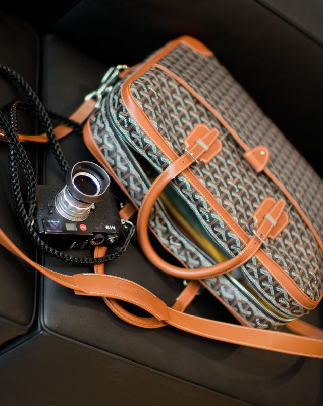 Goyard Ambassade photo bag