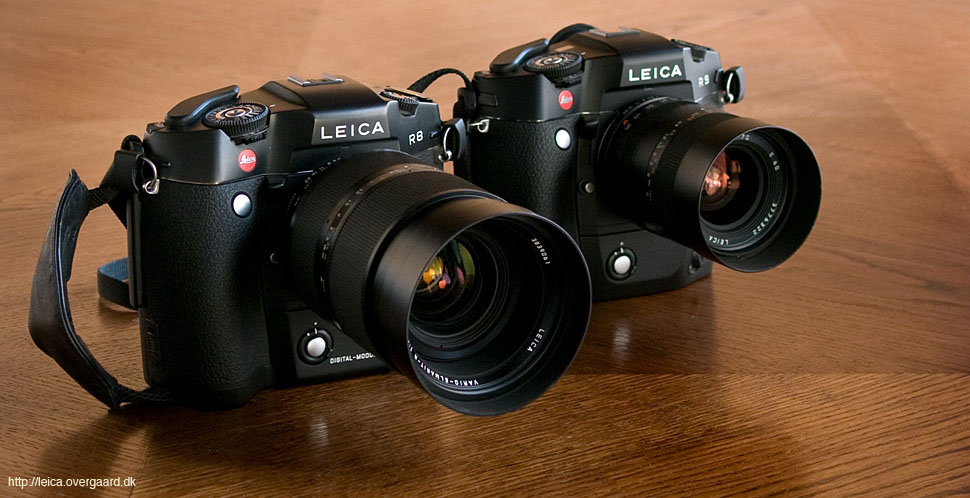 Leica R8 with DMR digital back and 35-70/2.8 zoom, and Leica R9 with film winder and 35-70/4.0 zoom. © Thorsten Overgaard.