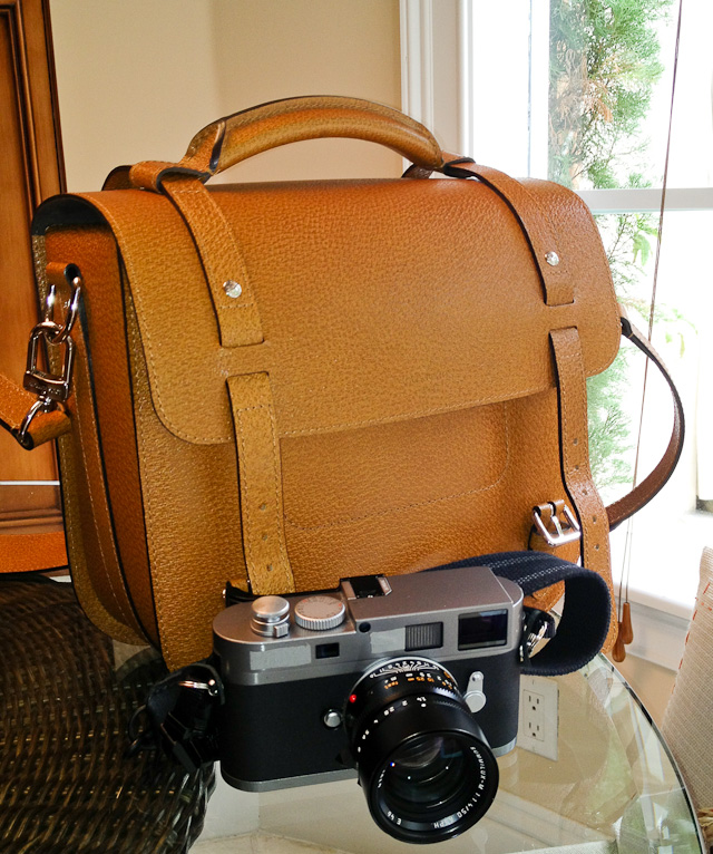 Louis Vuitton Reporter Camera Bag