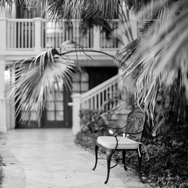 Florida. Leica M10 with Leica 50mm Noctilux-M ASPH f/0.95 FLE. © 2017 Thorsten Overgaard.