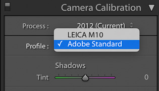 Adobe Standard camea profile for Leica M10 in Lightroom