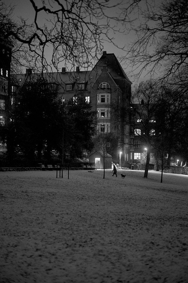 Skanseparken by night in Aarhus. Leica M10-P with Leica 50mm Summilux-M ASPH f/1.4. ©Thorsten Overgaard.