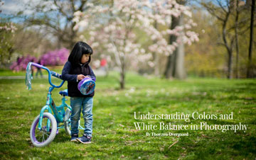 Understanding Colors and White Balance in Photography