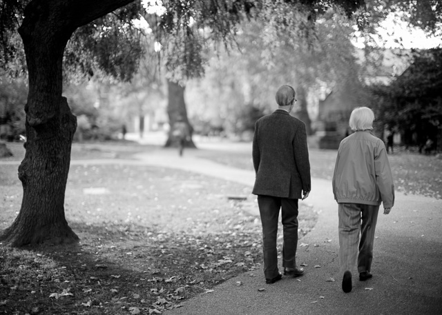 Saint George's Gardens, London, October 2015. Leica M 240 with Leica 50mm Noctilux-M ASPH f/0.95